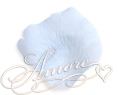 Blue Sky  Silk Rose Petals Wedding 2000