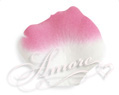 Flamingo White and Fuschia  Silk Rose Petals Wedding 600