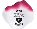 Personalized Silk Rose Wedding Petals 100