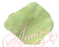 Key Lime Green Silk Rose Petals Wedding 600