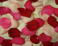 Valentine Mix Fresh Rose Petals Wedding 2000