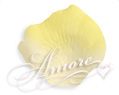 Moonlight light ivory and yellow silk rose petals 600