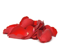 Red Fresh Rose Petals Wedding 4000