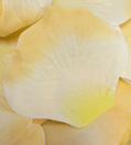 Peach Yellow Apricot Silk Rose Petals Wedding 600