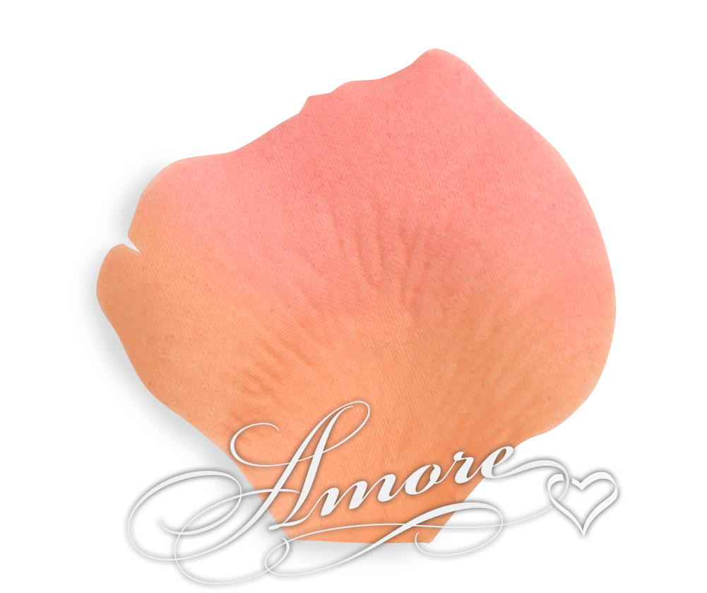 Coral Silk Rose Petals Wedding 2000